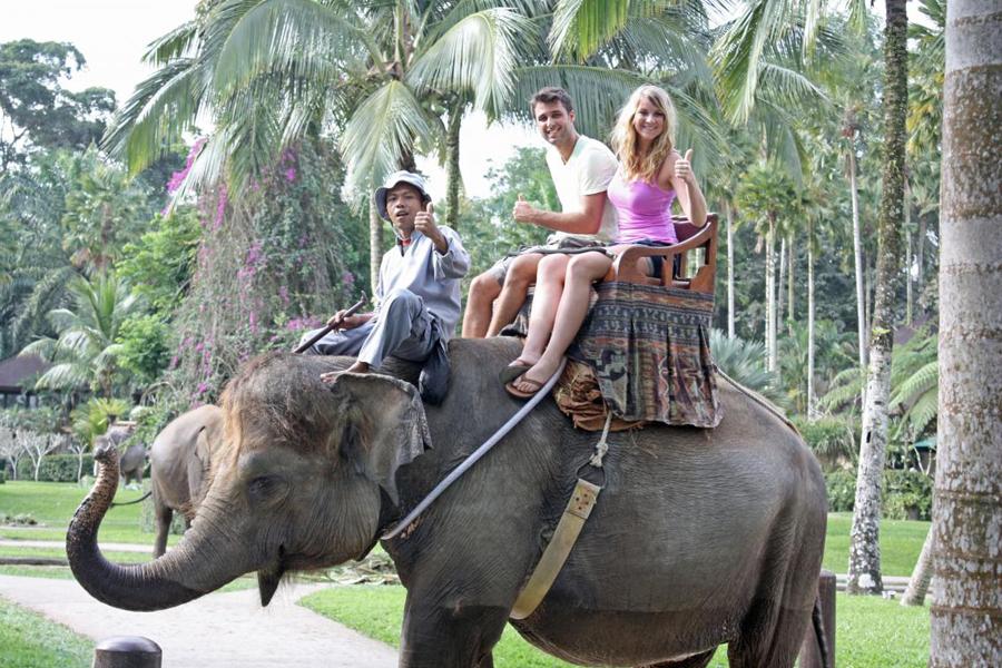 Roy-Bali-Activities44